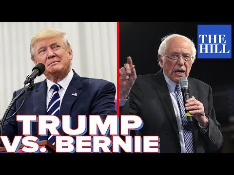 Panel: What will a Trump, Bernie matchup look like?