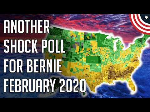 National Democratic Primary Poll Bernie's First Lead Quinnipiac – 2020 Dem Primary – February 2020