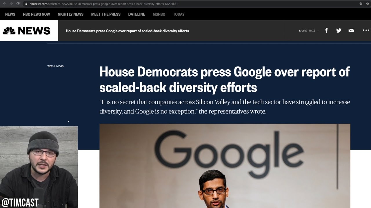 Media Activist EXPOSED After Getting Democrats To Intervene Over Google Ending Diversity Programs