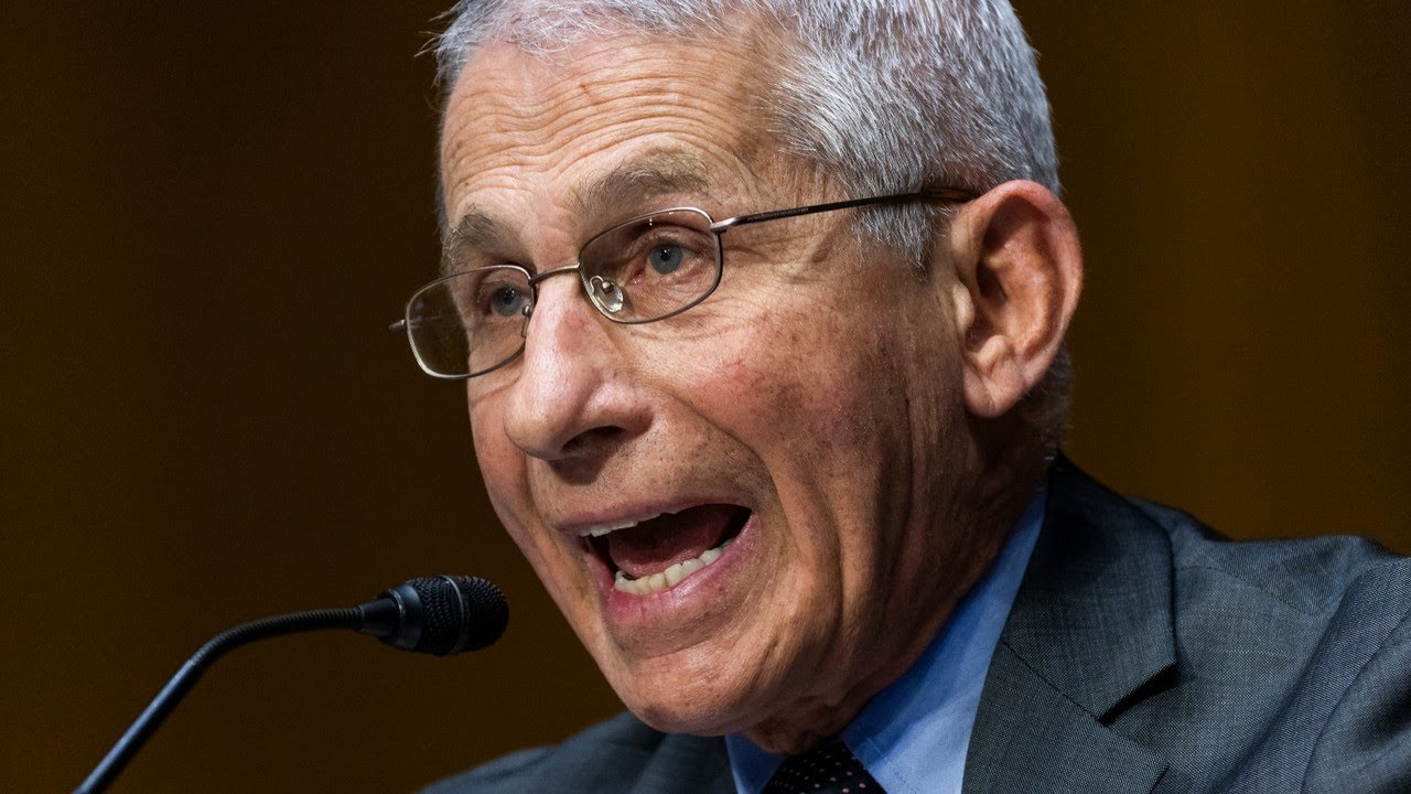 Dr Anthony Fauci used 'strawman' argument in feud with Rand Paul