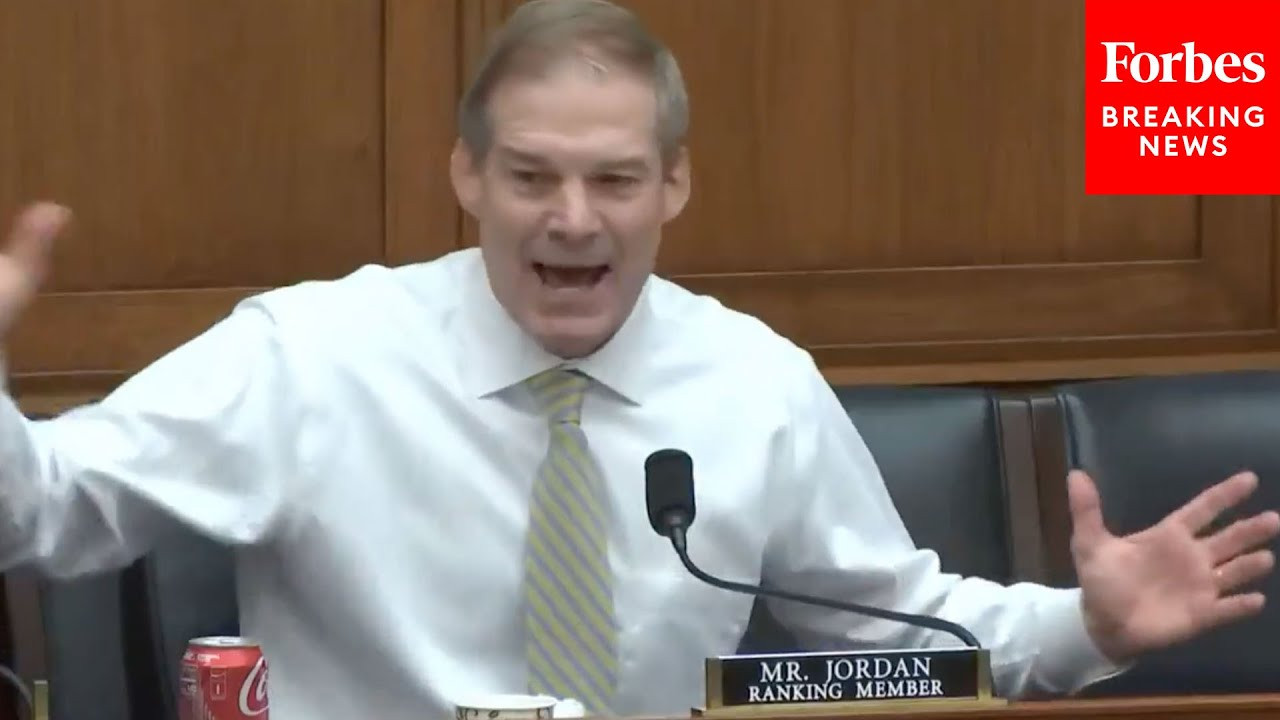 'Dumbest Thing I've Heard Said Today – Holy Cow!': Jim Jordan Unleashes On Democrats During Hearing